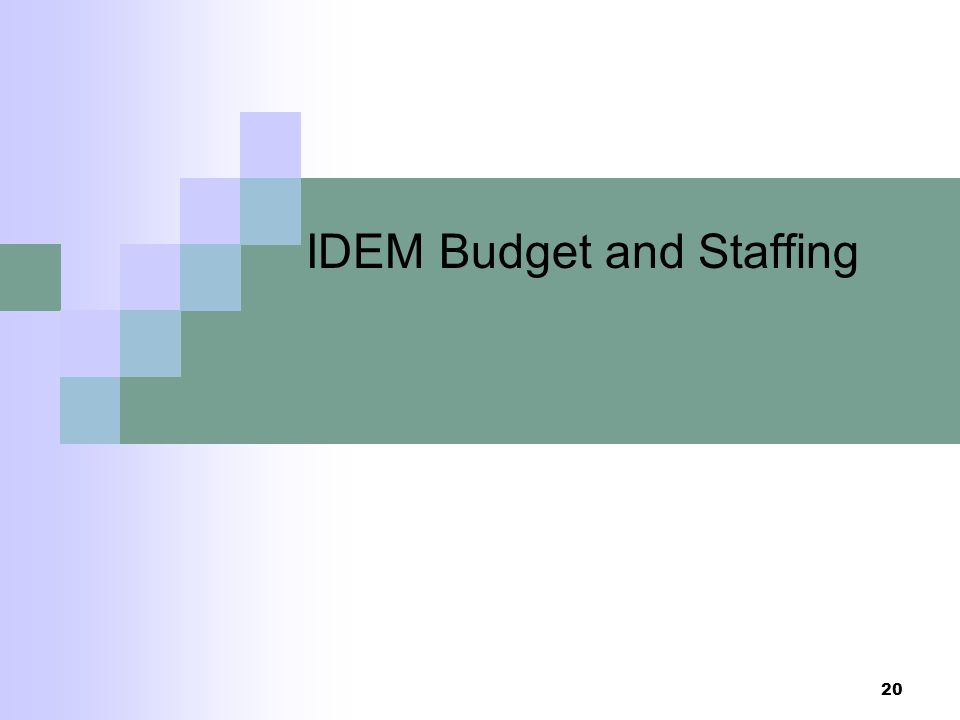 IDEM Budget and Staffing