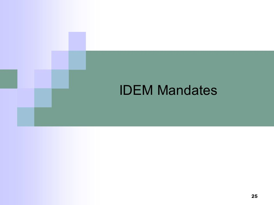 IDEM Mandates