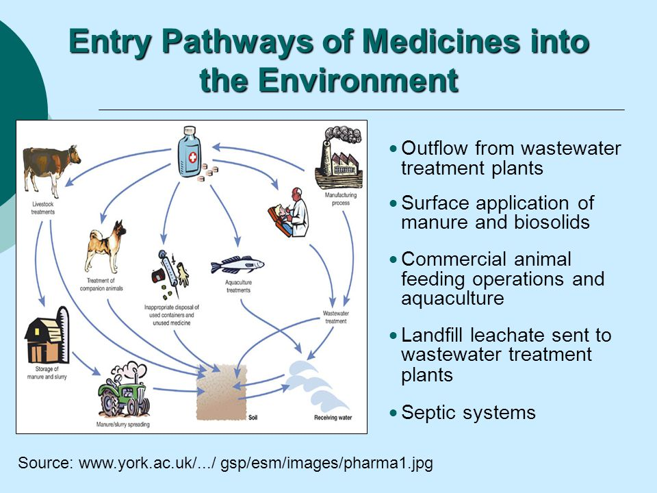 Disposal Of Unwanted Medicines Ppt Video Online Download