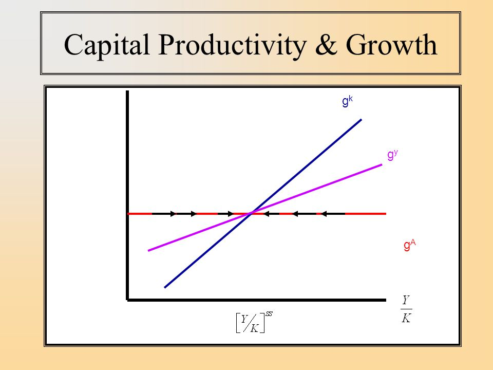 Capital Productivity & Growth