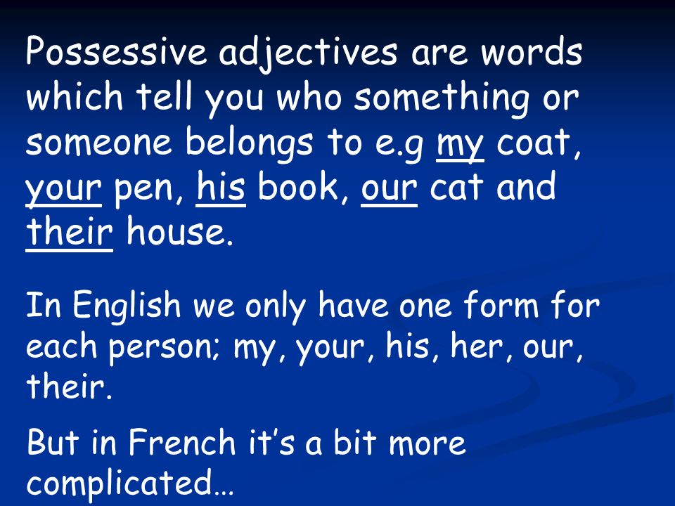 Possessive adjectives are words