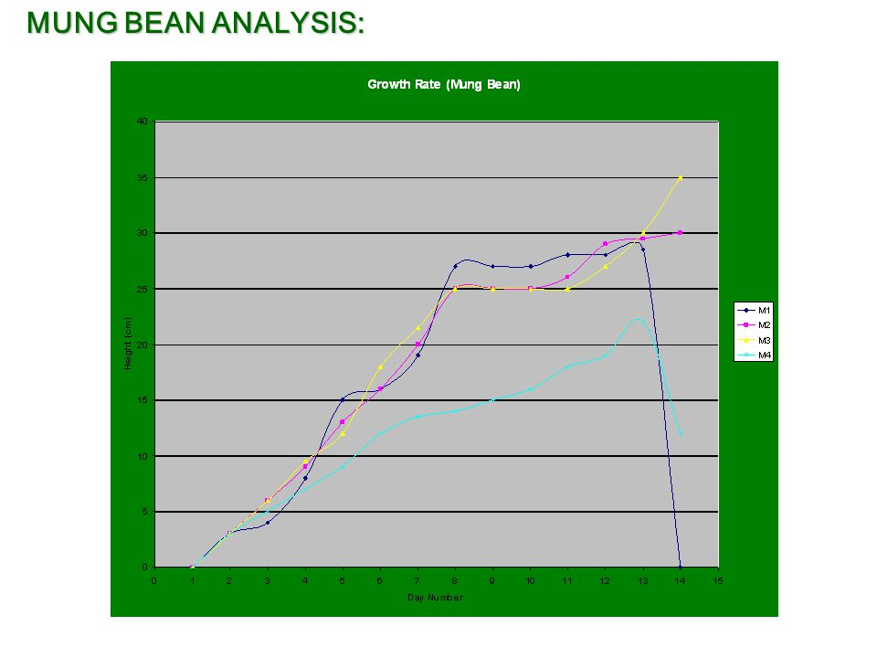 an analysis of the experiment on bean growth Lab report on plant growth at the beginning of the semester, your instructors set up an experiment to determine whether two hormones, auxin and cytokinin, affect the.
