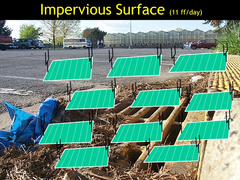 Impervious Surface (11 ff/day)