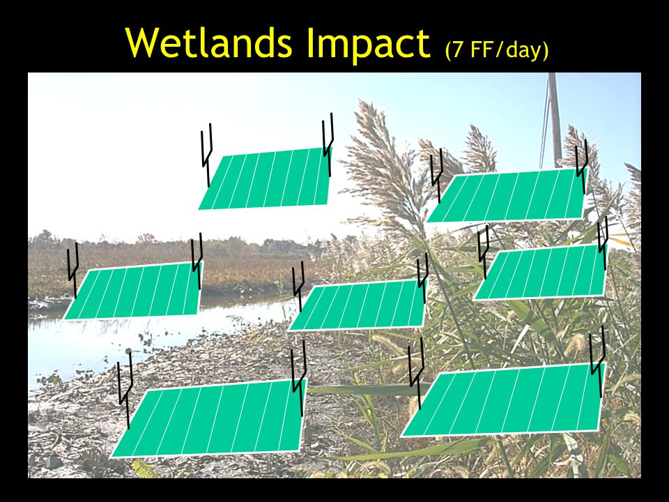 Wetlands Impact (7 FF/day)