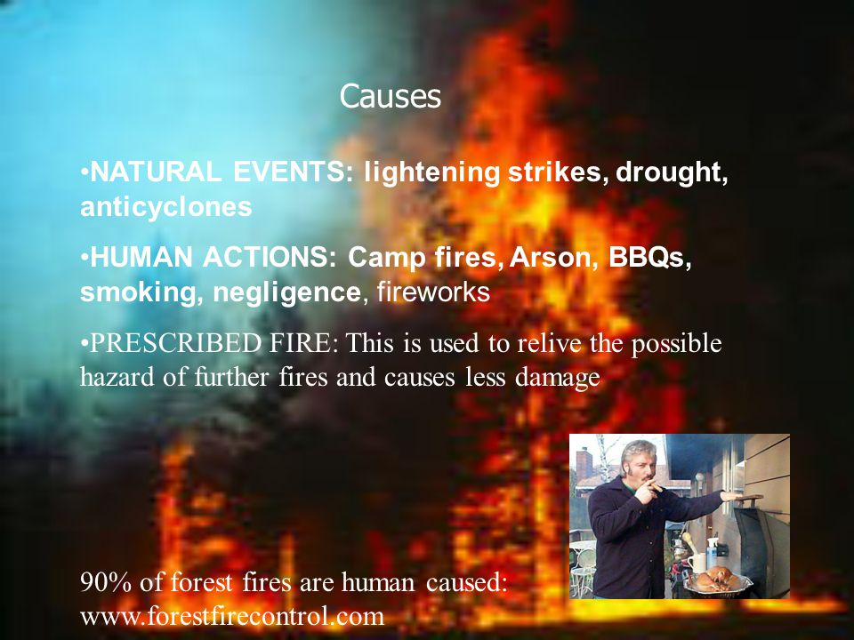 causes of forest fires Human-made forest fires in the himalayan state of uttarakhand have been a regular and historic feature major fires have been noted in 1911, 1921, 1930, 1931, 1939, 1945, 1953, 1954, 1957, 1958, 1959, 1961, 1964, 1966, 1968, 1970, 1972 and 1995.