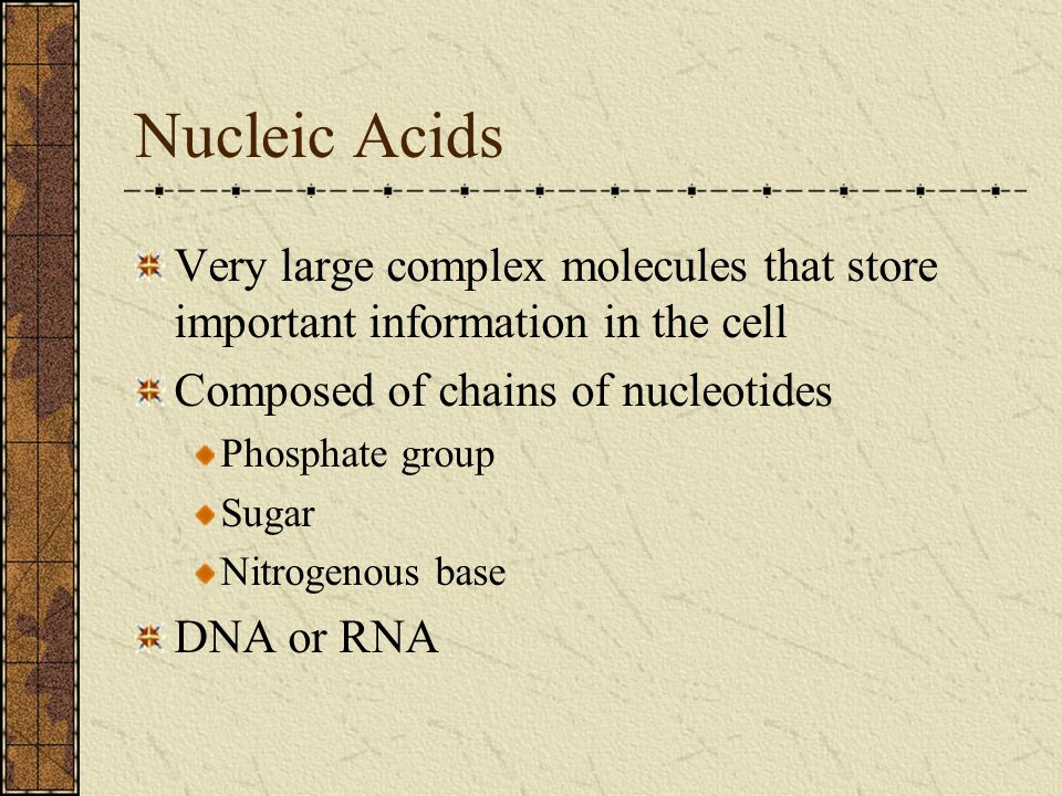 Nucleic Acids Very large complex molecules that store important information in the cell. Composed of chains of nucleotides.