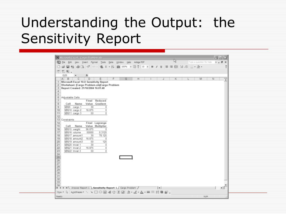 Understanding the Output: the Sensitivity Report