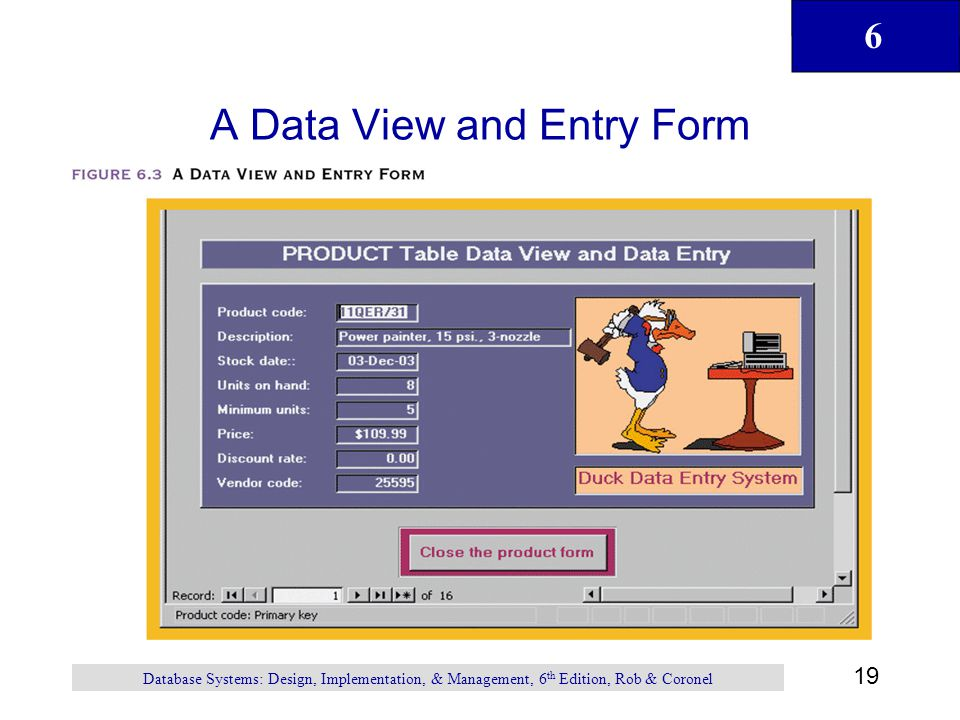 A Data View and Entry Form