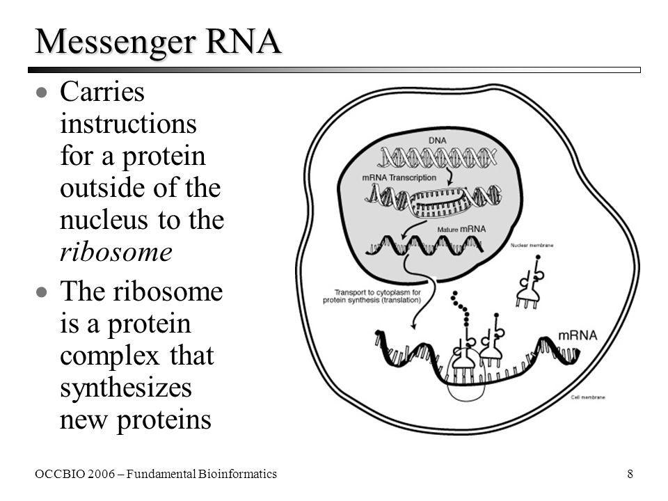 Fundamental Concepts of Bioinformatics - ppt download