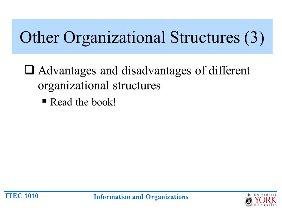 Other Organizational Structures (3)