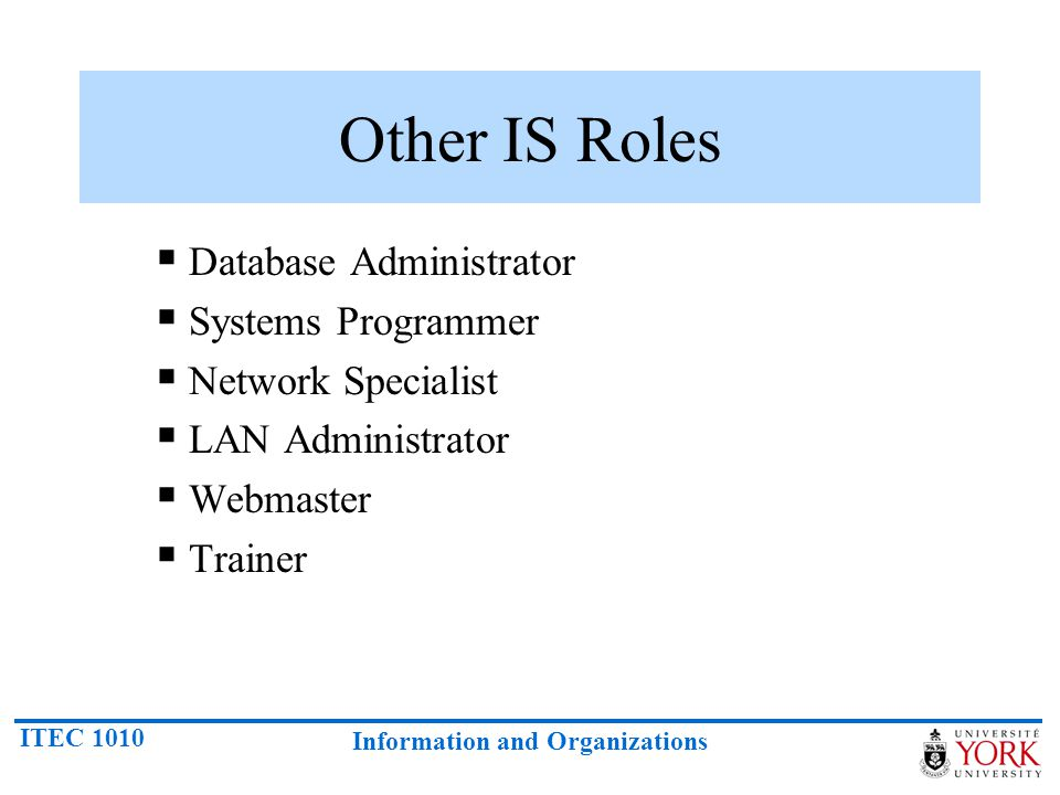 Other IS Roles Database Administrator Systems Programmer