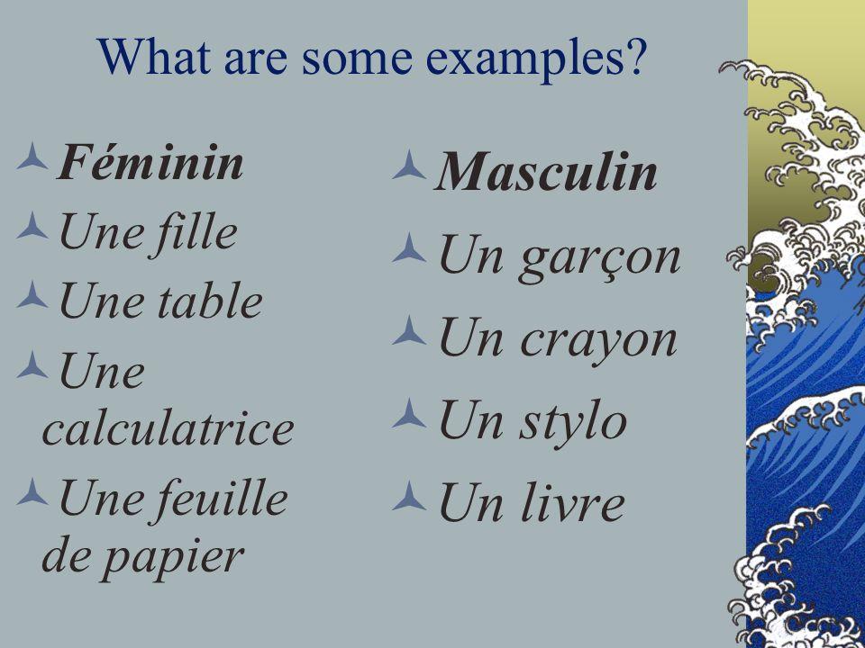 Masculin Un garçon Un crayon Un stylo Un livre What are some examples