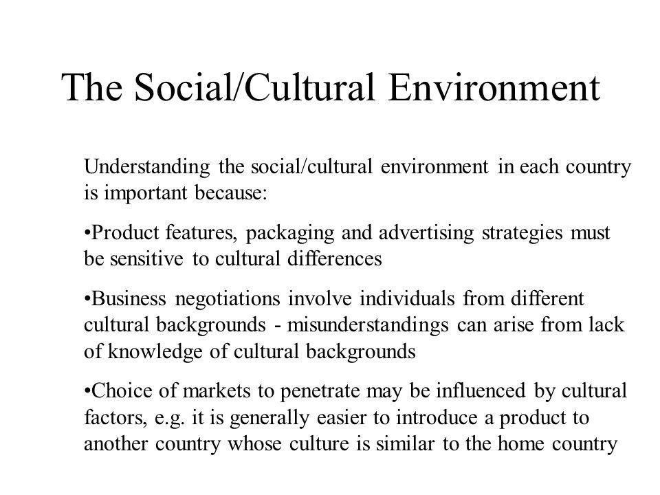 social cultural environment The socio-cultural environment for entrepreneurship: a comparison between  east asian and anglo-saxon countries thomas m begley northeastern.