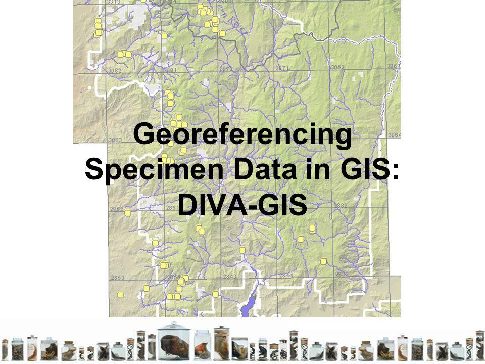 Georeferencing specimen data in gis diva gis ppt video for Diva gis