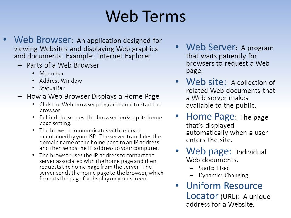 Web Terms Web Browser: An application designed for viewing Websites and displaying Web graphics and documents. Example: Internet Explorer.