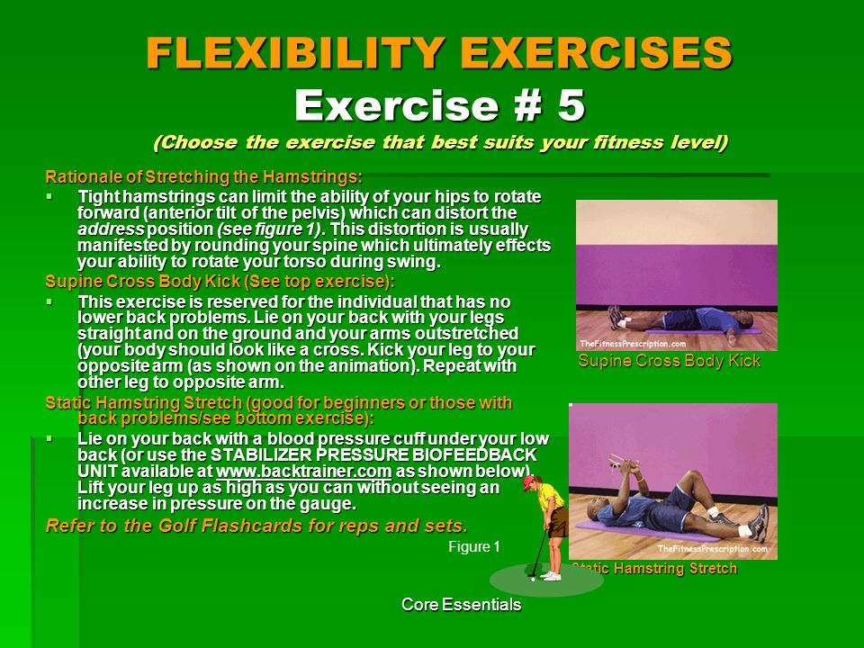FLEXIBILITY EXERCISES Exercise # 5 (Choose the exercise that best suits your fitness level)
