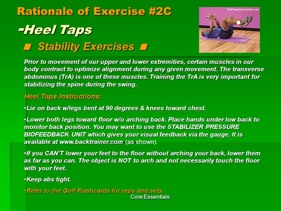 Rationale of Exercise #2C -Heel Taps < Stability Exercises <