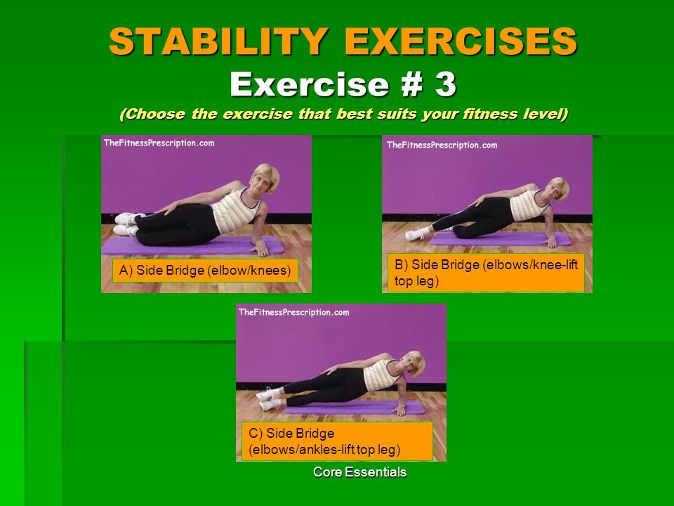 STABILITY EXERCISES Exercise # 3 (Choose the exercise that best suits your fitness level)