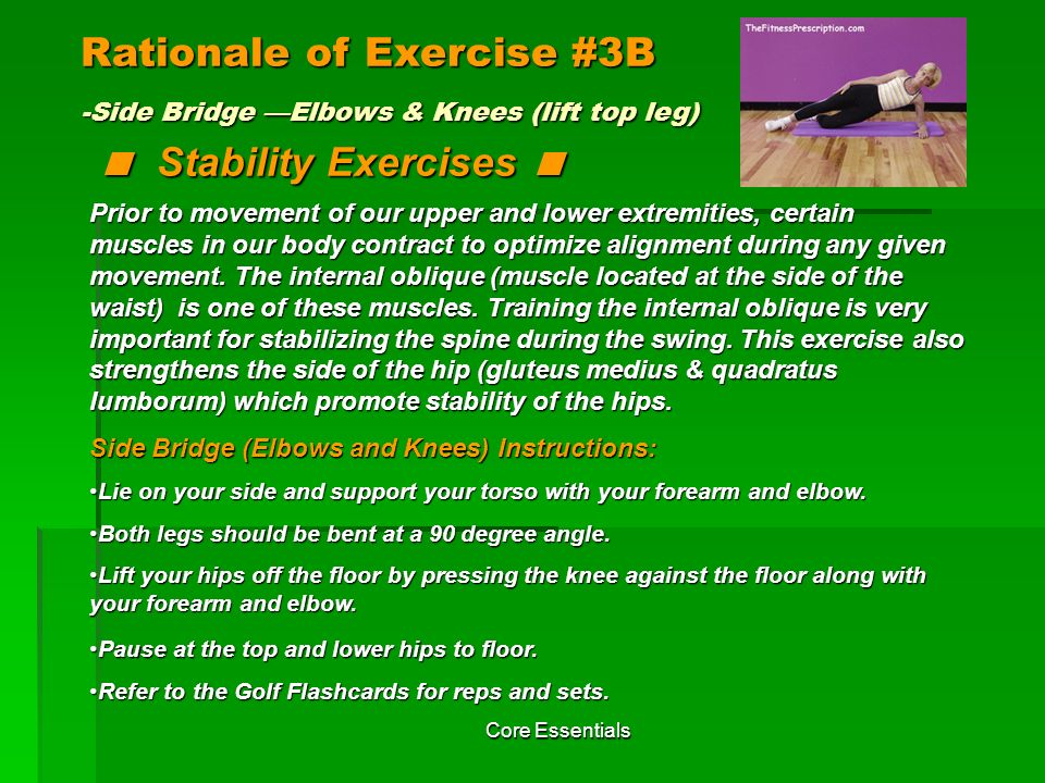 Rationale of Exercise #3B -Side Bridge —Elbows & Knees (lift top leg) < Stability Exercises <