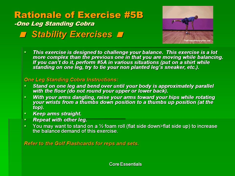 Rationale of Exercise #5B -One Leg Standing Cobra < Stability Exercises <