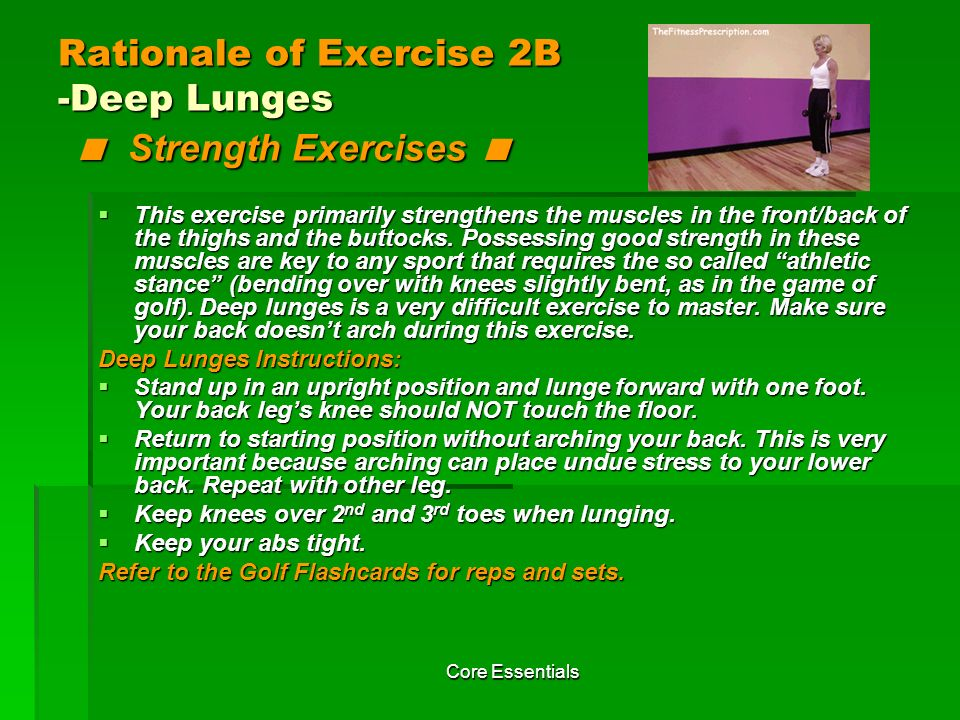 Rationale of Exercise 2B -Deep Lunges < Strength Exercises <