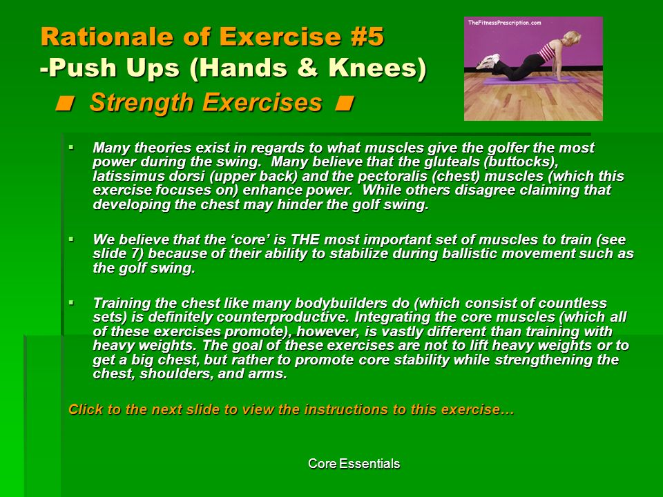 Rationale of Exercise #5 -Push Ups (Hands & Knees) < Strength Exercises <