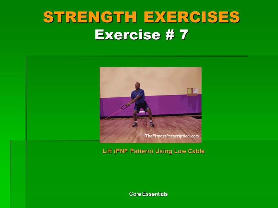 STRENGTH EXERCISES Exercise # 7