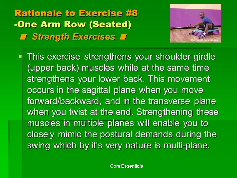 Rationale to Exercise #8 -One Arm Row (Seated) < Strength Exercises <