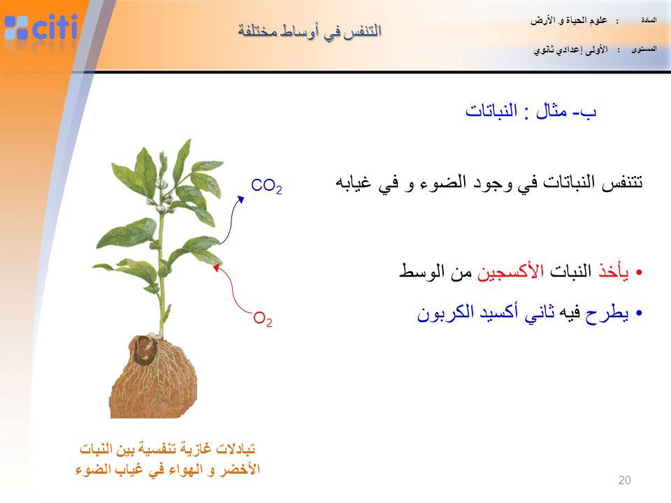 تبادلات غازية تنفسية بين النبات الأخضر و الهواء في غياب الضوء