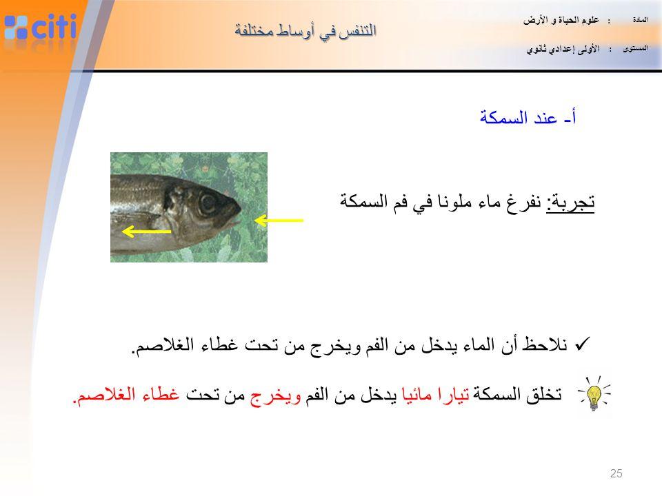 تجربة: نفرغ ماء ملونا في فم السمكة