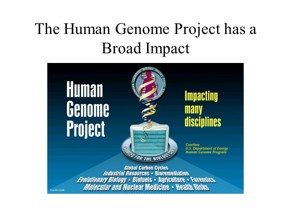 the development and impact of the human genome project Human genome sequencing and its impact on science and medicine jutta marzillier to find correlations how genome information relates to development of the human genome project sequence represents a.