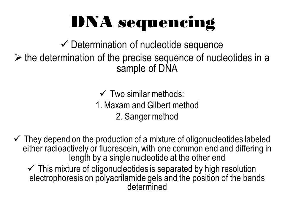the maxam gilberts method biology essay This method for studying a metabolic pathway by looking for accumulation of intermediates in mutants was used in experiments carried out 40 years later to study biosynthetic pathways in microorganisms.