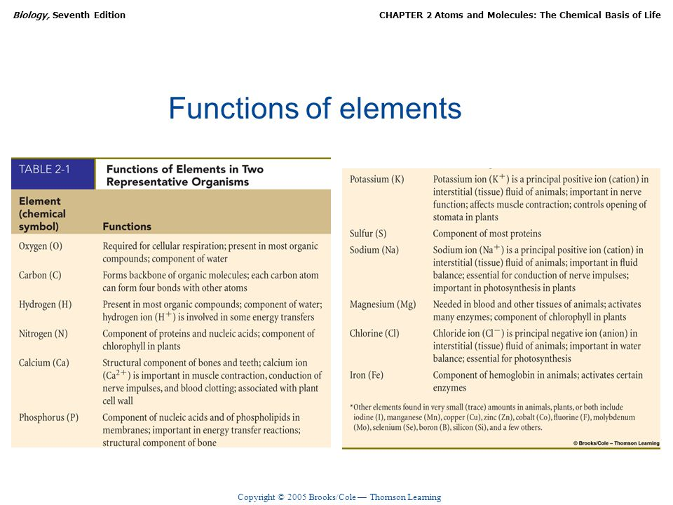 Functions of elements
