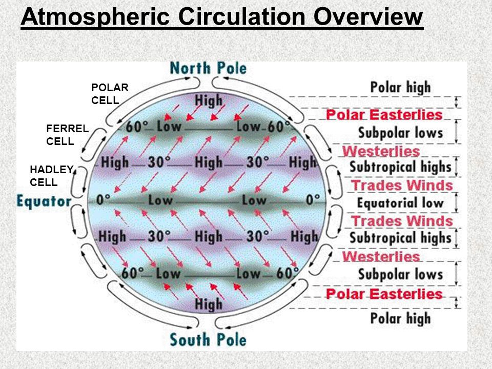 an overview of atmospheric circulation 31 living with the physical environment  global atmospheric circulation helps to  overview of the effects of climate change on people.