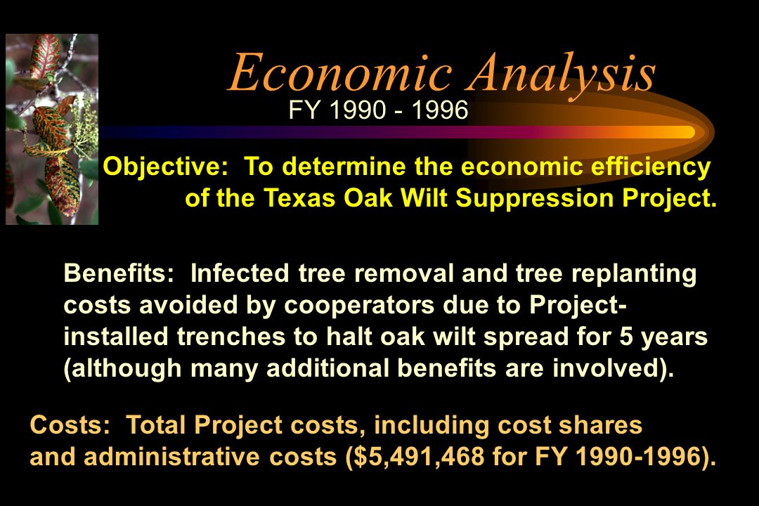 economic analysis of projects pdf