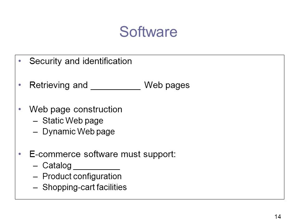 Software Security and identification
