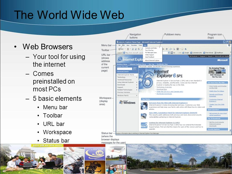 World Wide Web and Tool