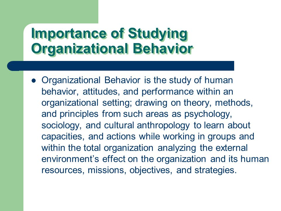 Organisational Behaviour Essay