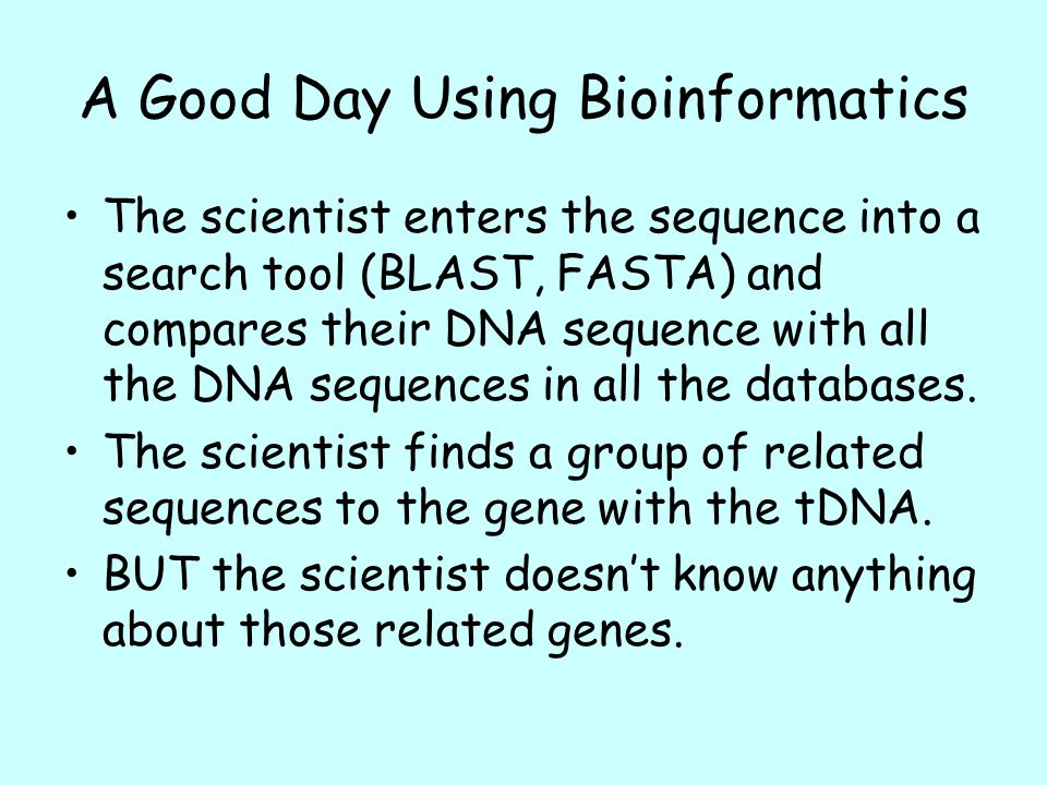how to download fasta sequence from ncbi