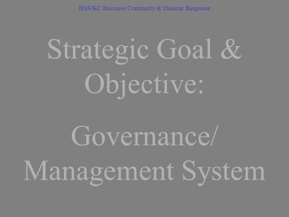strategic management systems Strategic management activities transform the static plan into a system that provides strategic performance feedback to decision making and enables the plan to evolve and grow as requirements and other circumstances change strategy execution is basically synonymous with strategy management and amounts to the systematic implementation of a strategy.