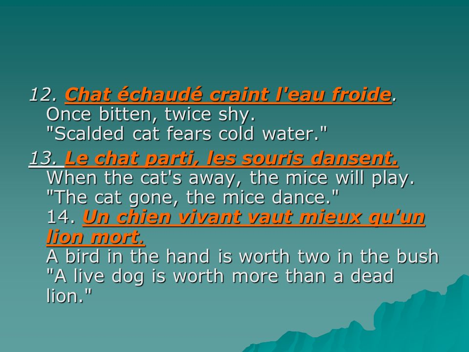 12. Chat échaudé craint l eau froide. Once bitten, twice shy