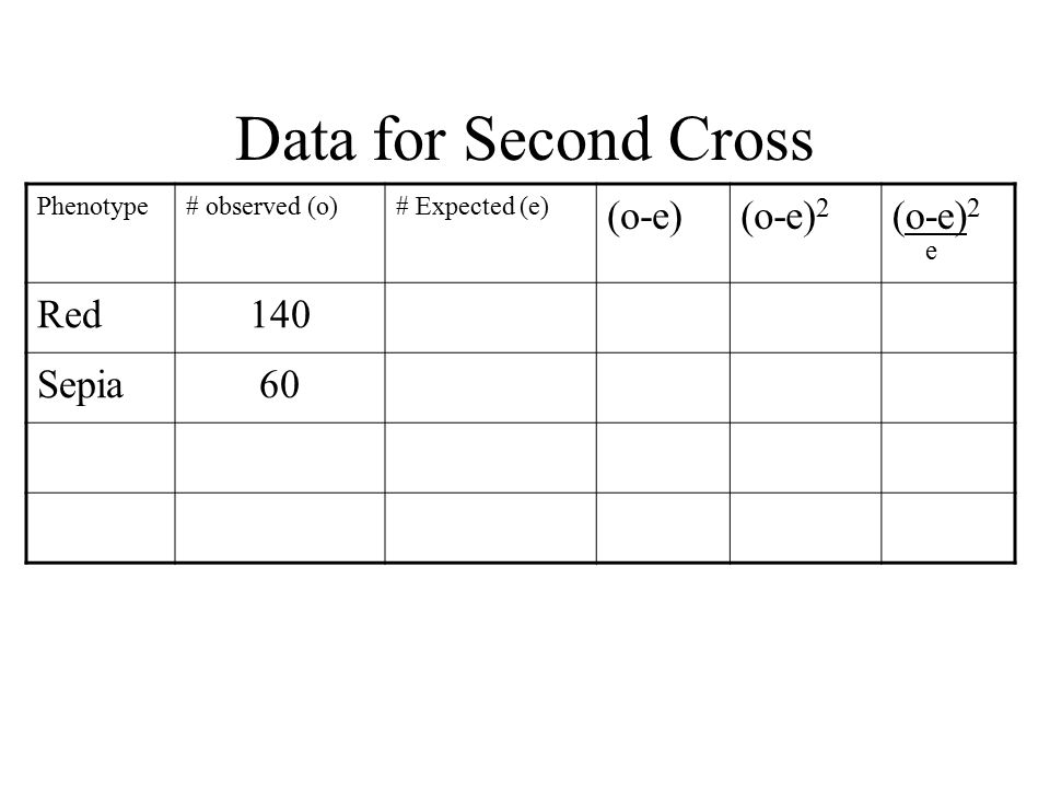 chi square for f1 and f2 drosophila cross Genetics of drosophila the punnett square for this cross is diagrammed the chi-square test is a statistical tool that compares experiment results with an.