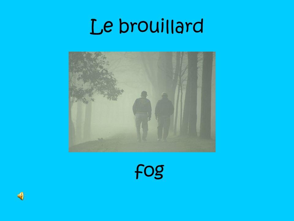 Le brouillard fog