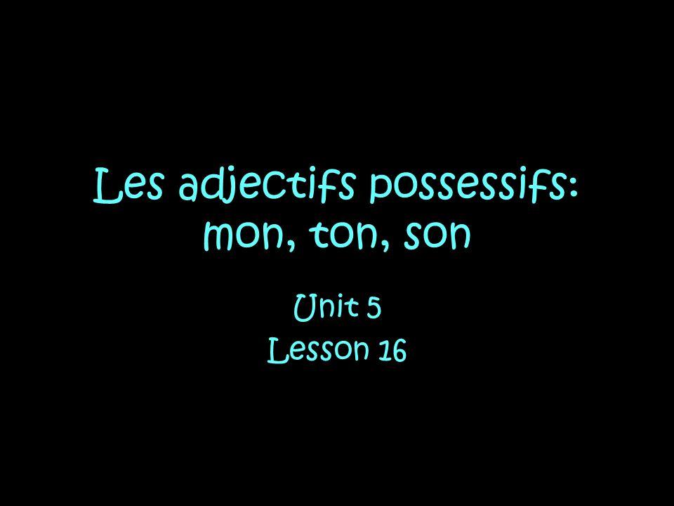 Les adjectifs possessifs: mon, ton, son