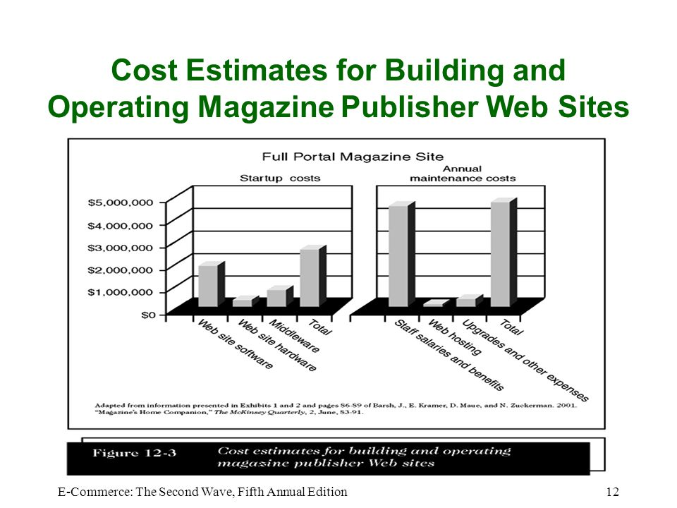 E commerce the second wave fifth annual edition ppt for Website building cost