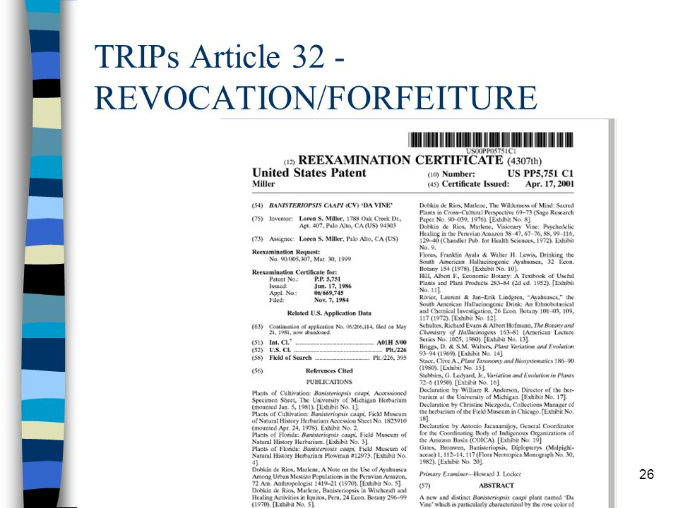 TRIPs Article 32 - REVOCATION/FORFEITURE