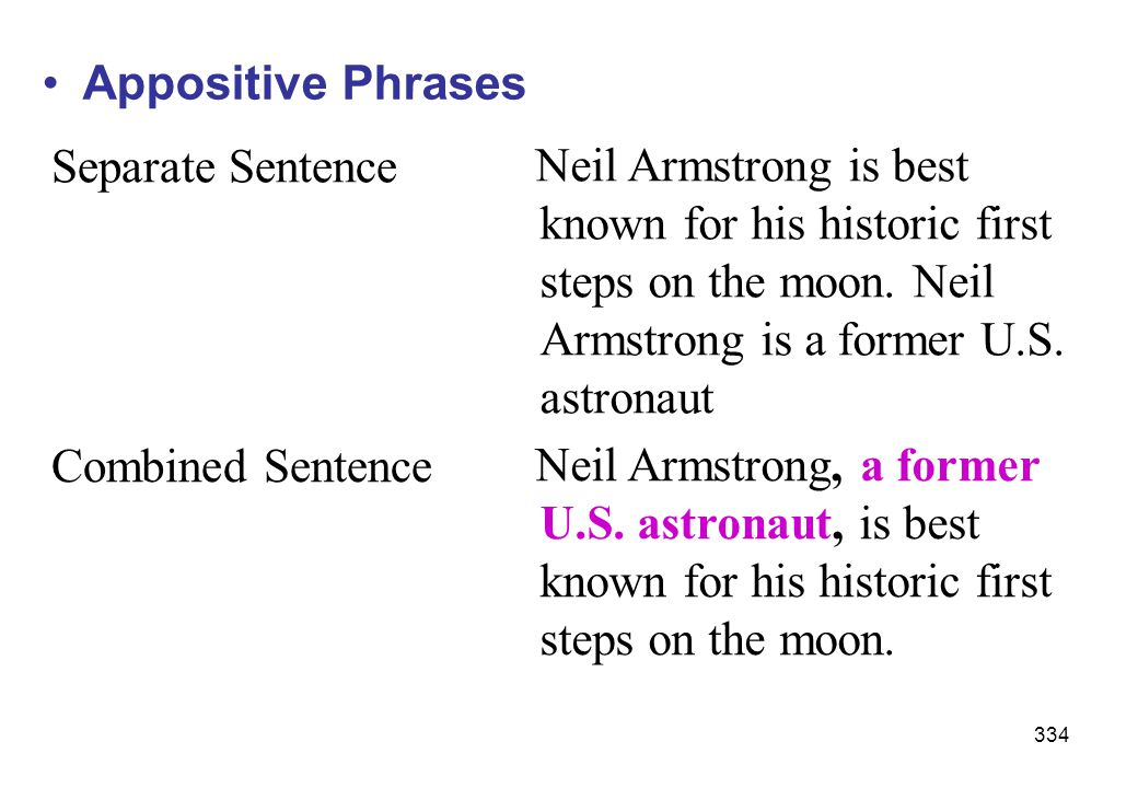 Appositive Phrases Separate Sentence.