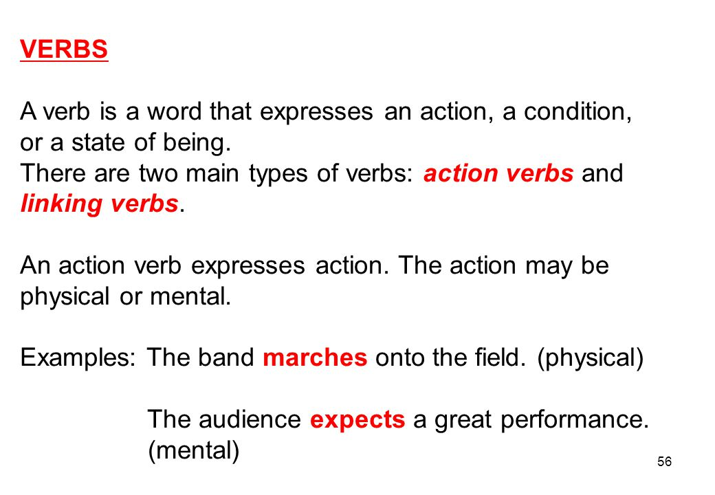 VERBS A verb is a word that expresses an action, a condition, or a state of being. There are two main types of verbs: action verbs and.