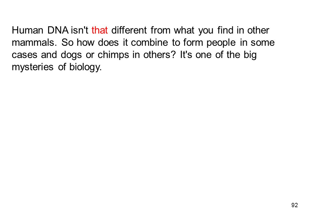 Human DNA isn t that different from what you find in other mammals