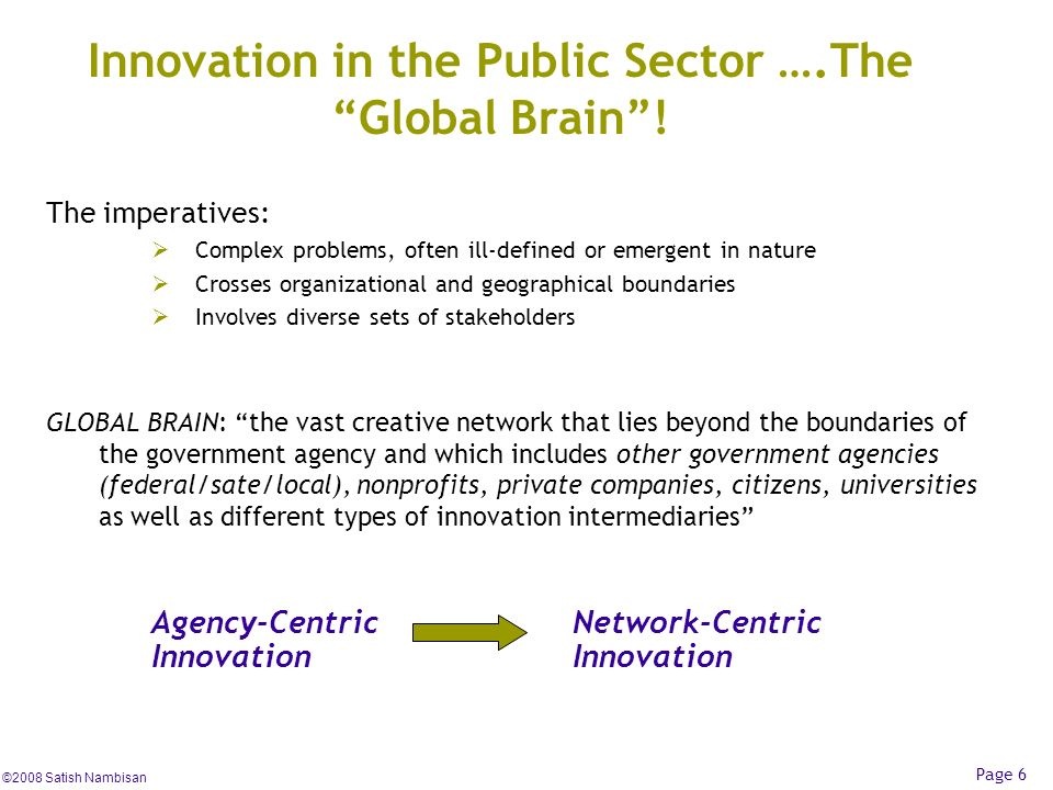 Innovation in the Public Sector ….The Global Brain !